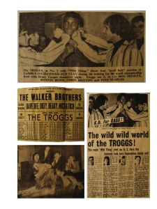 Page Troggs cuttings